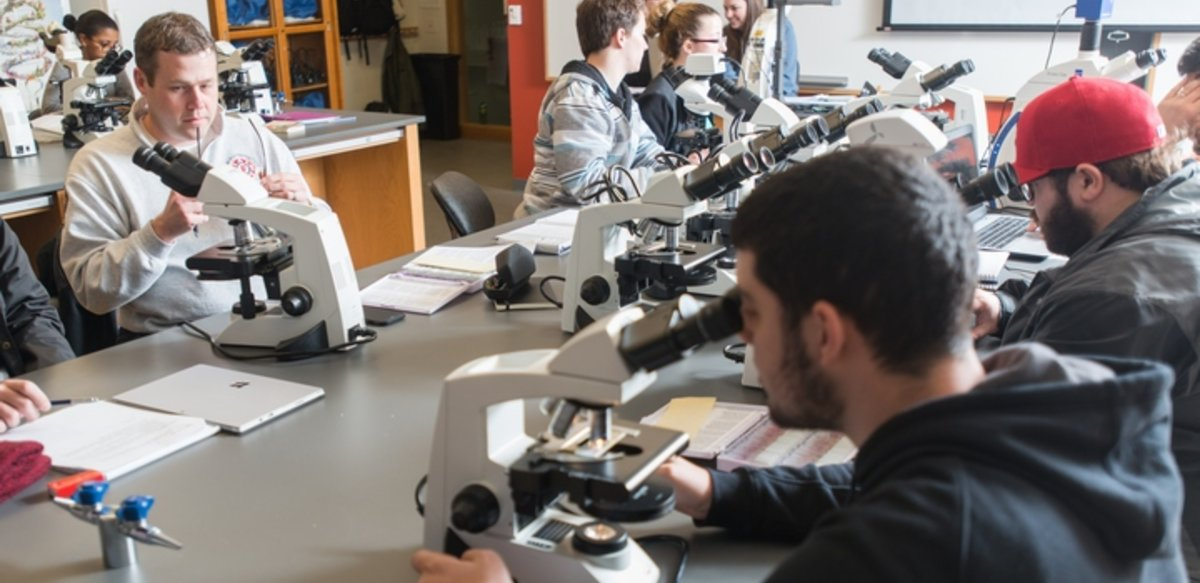 students at tables working with microscopes