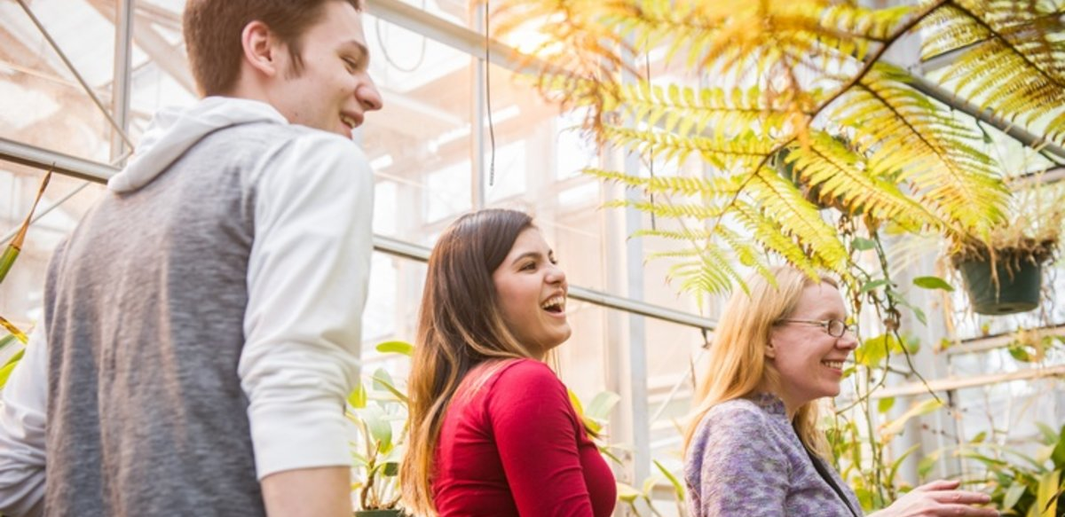 Professor and students in greenhouse surrounded by plants